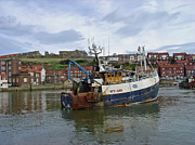 River Esk Prints - Fishing Trawler WY 485 at Whitby Print by Rod Johnson
