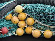 Fishnet Floats Print by Carol Leigh