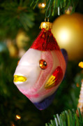 Family Time Art - Fishy Ornament by Jera Sky