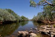 Wa Photos - Fitzroy River by Tony Brown