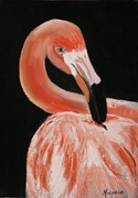 Flamingo Pastels Framed Prints - FL Resident Framed Print by Michele Turney
