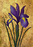 Look Mixed Media Prints - Flag Iris with Gold Leaf Print by Kerri Ligatich