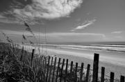 Flagler Framed Prints - Flagler Beach View Framed Print by Andrew Armstrong  -  Orange Room Images