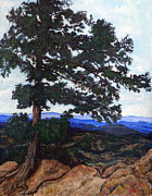 Front Range Painting Prints - Flagstaff Mountain Print by Tom Roderick