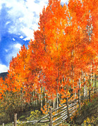 Orange Leaves Framed Prints - Flaming Aspens Framed Print by Barbara Jewell