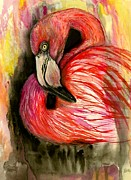 Flamingo Drawings - Flamingo aquarel by Katerina A Cechova