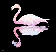 Postage Included Paintings - Flamingo by Eric Kempson