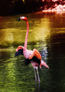 Flamingoes Art - Flamingo Flow by Bill Tiepelman