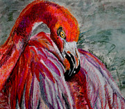 Flamingo Drawings Prints - Flamingo in Vivid Light Print by Linda Hubbard Red Cap Art