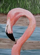 Waterfowl Paintings - Flamingo by Laurilee Taylor