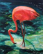 Flamingo Paintings - Flamingo of Homasassa by Patricia Arroyo