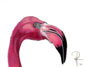 Flamingo Paintings - Flamingo Profile by Doug Hiser