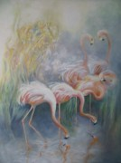 Eve Corin - Flamingos