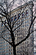 RC Candolin-Gelber - Flatiron Building...