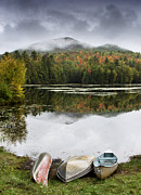 Fall Leaves Prints - Flavor of the Adirondacks Print by Brendan Reals