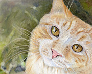 Orange Cat Pastels Posters - Fletcher Poster by Peggy Covic