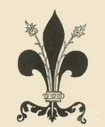 Fleur-de-lis Print by Science Source