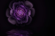 Mysterious Digital Art - Fleur by John Edwards