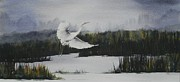 Crane Painting Originals - Flight by Carol McLagan