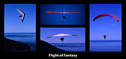 Sports Montage Posters - Flight Of Fantasy With Caption Poster by Bob Christopher