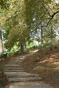 Flight Of Stairs Posters - Flight of steps in Parc des Buttes-Chaumont Poster by Fabrizio Ruggeri