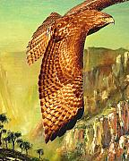 Tail Mixed Media Posters - Flight of the Red Tailed Hawk Poster by Wingsdomain Art and Photography