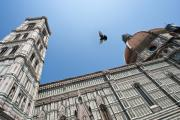 Mark Currier Art - Flight Over Duomo by Mark Currier
