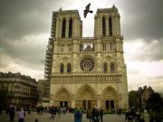 Mark Currier Art - Flight Over Notre Dame by Mark Currier