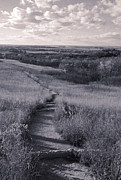 Visions Art - Flint Hills Vista by Thomas Bomstad