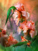 Print Of Irises Prints - Flirting So Sweetly Print by Carol Cavalaris