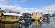 Searcy Prints - Float Houses in Victoria Canada Print by Tanya  Searcy