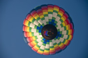 Balloon Art Print Prints - Floating Color Print by Charles Dobbs