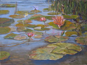 Lilly Paintings - Floating Lillies by Mohamed Hirji