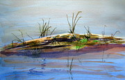 Quarry Paintings - Floating Log by Ramona Kraemer-Dobson