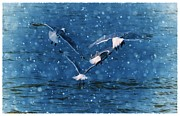 Sea Birds Digital Art - Flock  by Debra  Miller