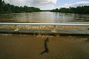 Floods Photos - Flood Waters Rise To Meet A Bridge by Randy Olson