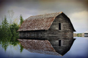 Farm Building Posters - Flooded Barn Poster by Teresa Zieba