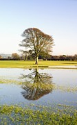 Flooding Photos - Flooded Farmland Fields by Duncan Shaw