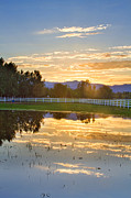 Horizon Lines Art - Flooded Pasture Country Sunset by James Bo Insogna
