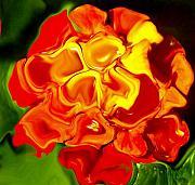 Flora Rebare Bella Print by Robert OP Parrish