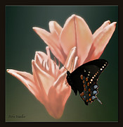 Stimulating  Colored Flower Prints - Floral Butterfly Dance Print by Debra     Vatalaro