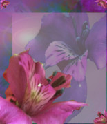 Stimulating  Colored Flower Prints - Floral Dust Print by Debra     Vatalaro