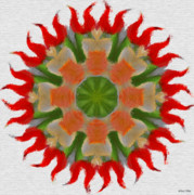 Flower Kaleidoscopes Posters - Floral Flare Poster by Jeff Kolker