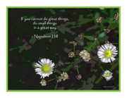 Napoleon Digital Art - Floral Great Way Quote by Joan  Minchak