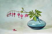 Bleeding Hearts Prints - Floral Hearts Print by Jacky Parker