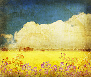 Old Paint Framed Prints - Floral In Yellow Field Framed Print by Setsiri Silapasuwanchai