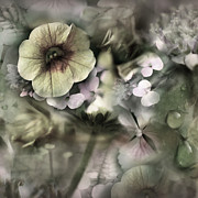 Wet Mixed Media Prints - Floral Montage Print by Bonnie Bruno