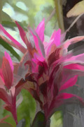 Artistic Photography Prints - Floral Pastel Print by Tom Prendergast