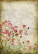 Parchment Photo Prints - Floral Pattern Print by Setsiri Silapasuwanchai