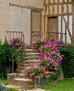 France Doors Prints - Floral stairs Print by David Freuthal